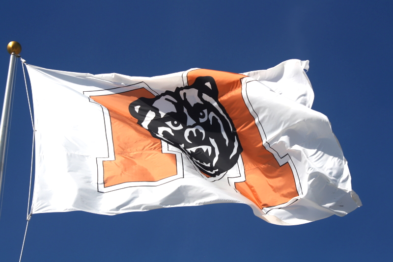 Mercer Flag